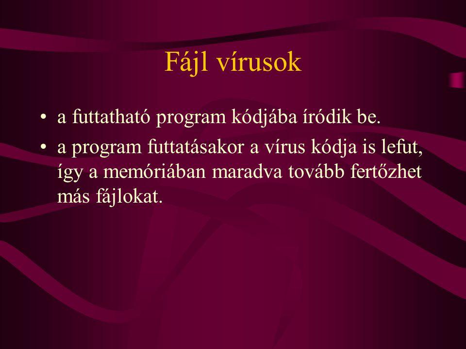 Fájl vírusok a futtatható program kódjába íródik be.