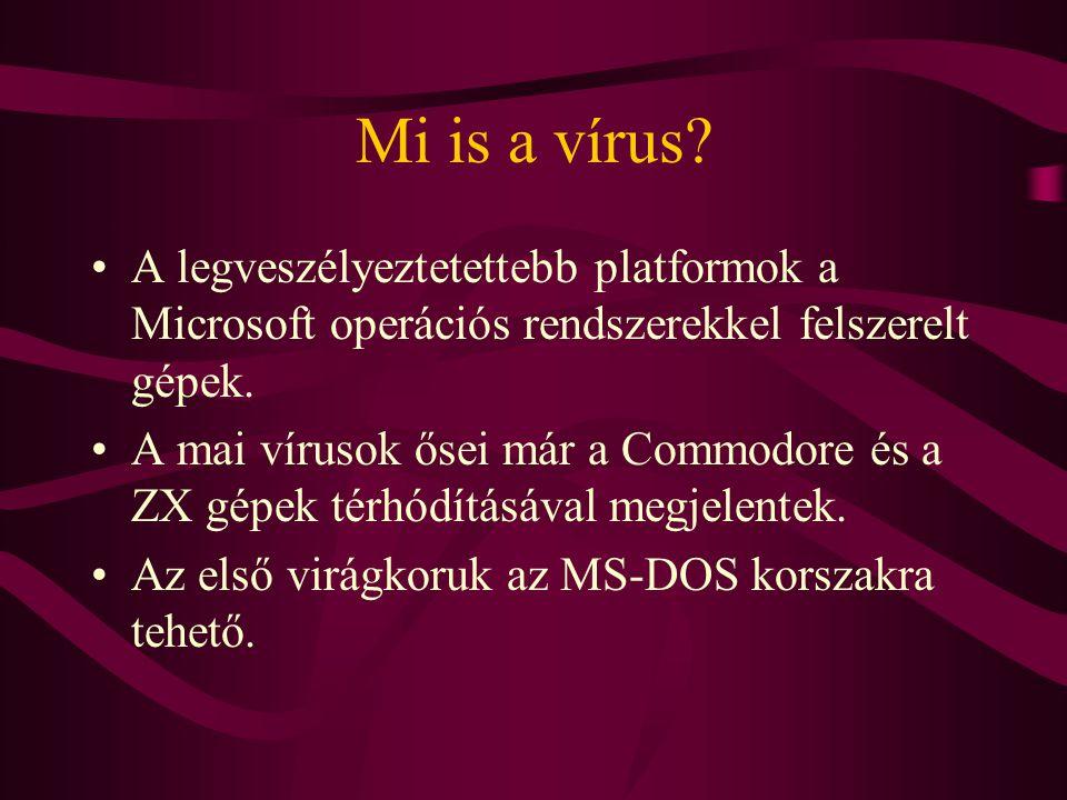 Vírusfajták Programférgek, olyan programok, amelyek nem szaporodnak, hanem belépve egy rendszerbe keresztülrágják magukat annak védelmi rendszerén.