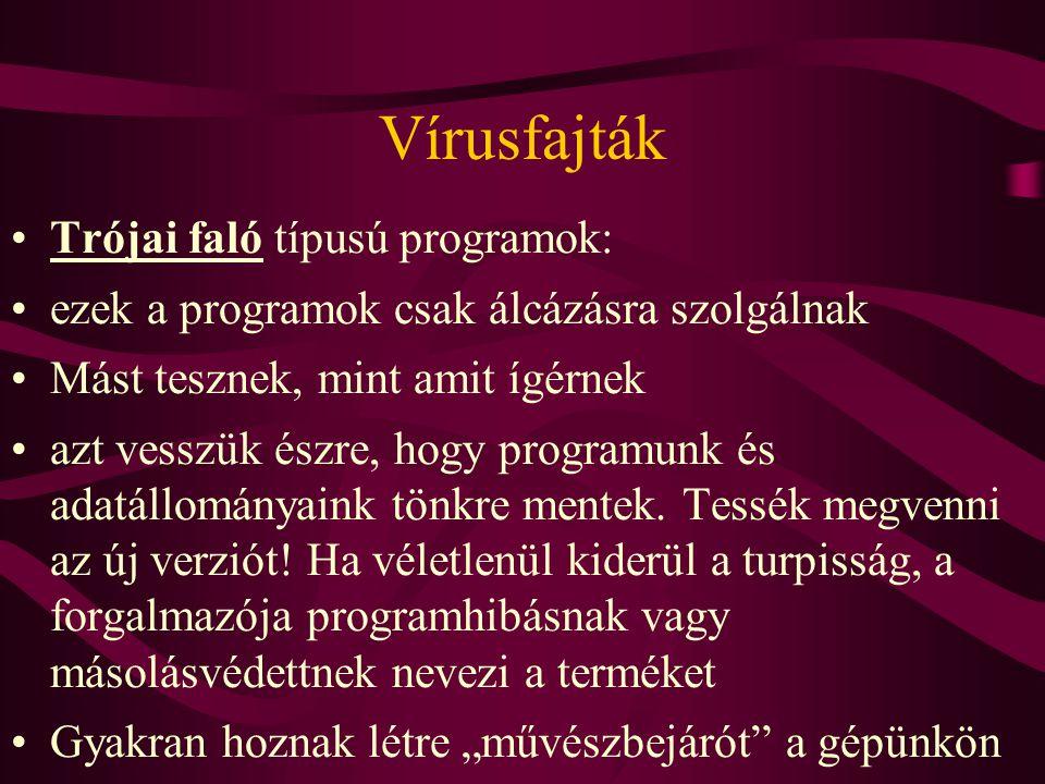 Vírusfajták Vírusprogramoknak nevezzük azokat a szoftvereket, amelyek önmagukat reprodukálni képesek (Továbbító közeg lehet a floppy, az adatátviteli hálózat vagy akár maga a gép.)