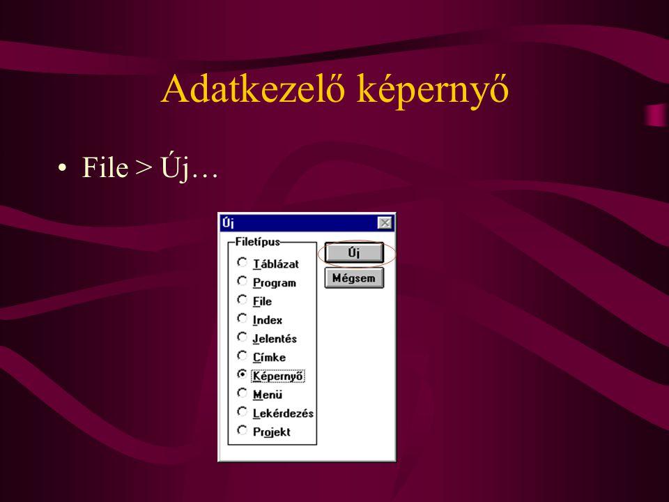 Adatkezelő képernyő File > Új…