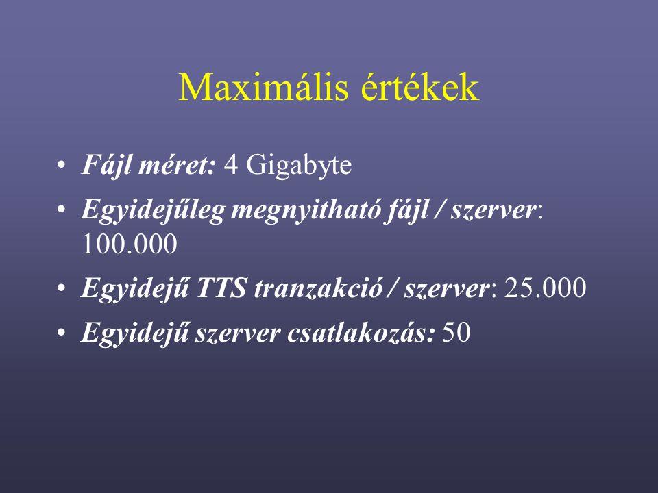 Maximális értékek Fájl méret: 4 Gigabyte Egyidejűleg megnyitható fájl / szerver: 100.000 Egyidejű TTS tranzakció / szerver: 25.000 Egyidejű szerver csatlakozás: 50