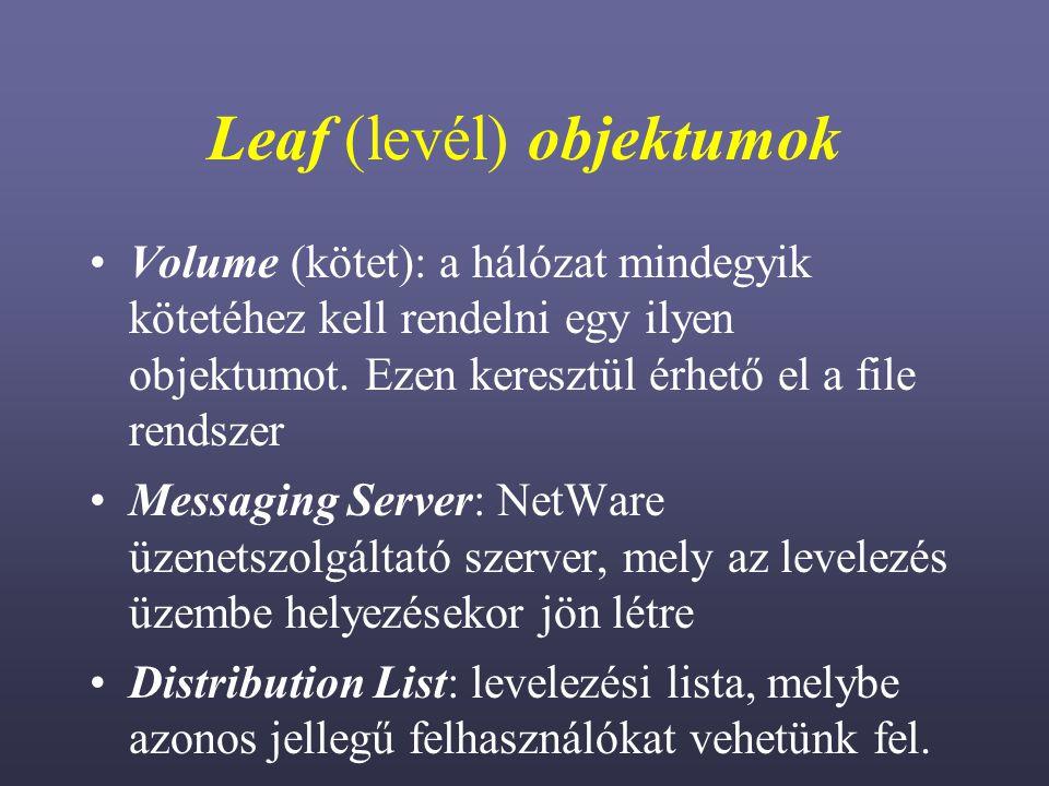 Leaf (levél) objektumok Volume (kötet): a hálózat mindegyik kötetéhez kell rendelni egy ilyen objektumot.