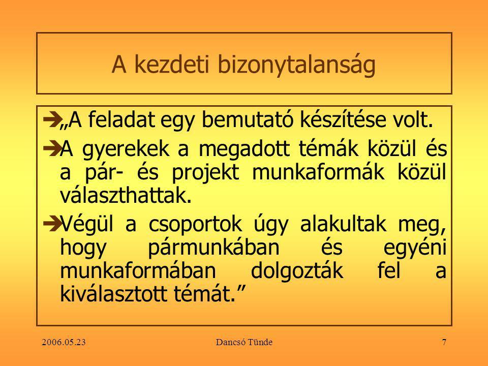 """2006.05.23Dancsó Tünde7 A kezdeti bizonytalanság  """"A feladat egy bemutató készítése volt."""