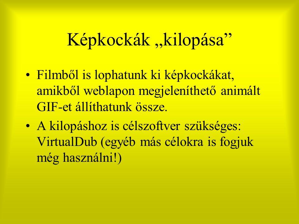 """Képkockák """"kilopása"""" Filmből is lophatunk ki képkockákat, amikből weblapon megjeleníthető animált GIF-et állíthatunk össze. A kilopáshoz is célszoftve"""