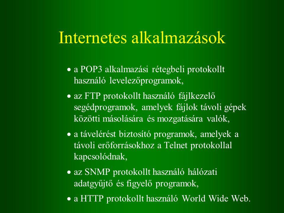 Internetes alkalmazások  a POP3 alkalmazási rétegbeli protokollt használó levelezőprogramok,  az FTP protokollt használó fájlkezelő segédprogramok, amelyek fájlok távoli gépek közötti másolására és mozgatására valók,  a távelérést biztosító programok, amelyek a távoli erőforrásokhoz a Telnet protokollal kapcsolódnak,  az SNMP protokollt használó hálózati adatgyűjtő és figyelő programok,  a HTTP protokollt használó World Wide Web.