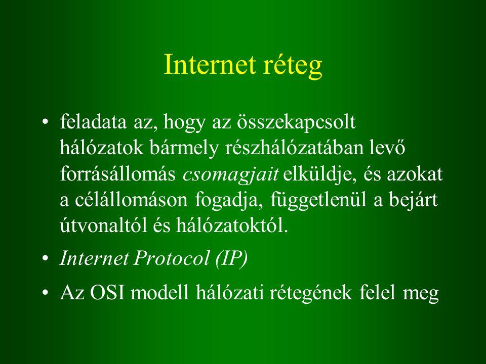 Internet réteg feladata az, hogy az összekapcsolt hálózatok bármely részhálózatában levő forrásállomás csomagjait elküldje, és azokat a célállomáson fogadja, függetlenül a bejárt útvonaltól és hálózatoktól.