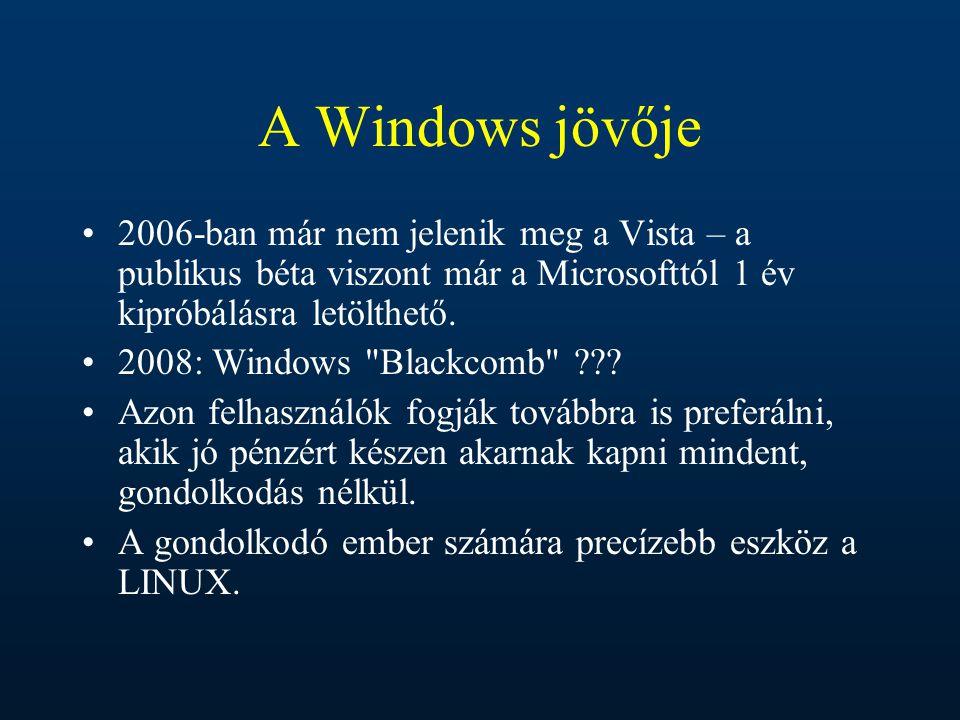 A Windows jövője 2006-ban már nem jelenik meg a Vista – a publikus béta viszont már a Microsofttól 1 év kipróbálásra letölthető. 2008: Windows
