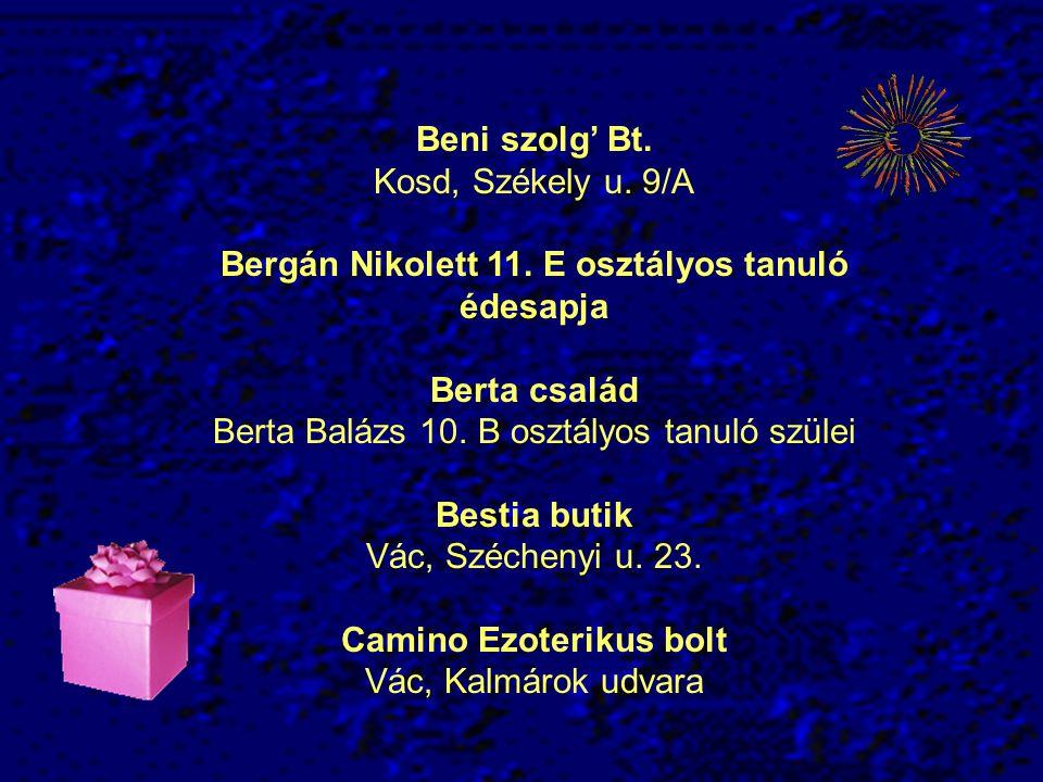 Beni szolg' Bt.Kosd, Székely u. 9/A Bergán Nikolett 11.