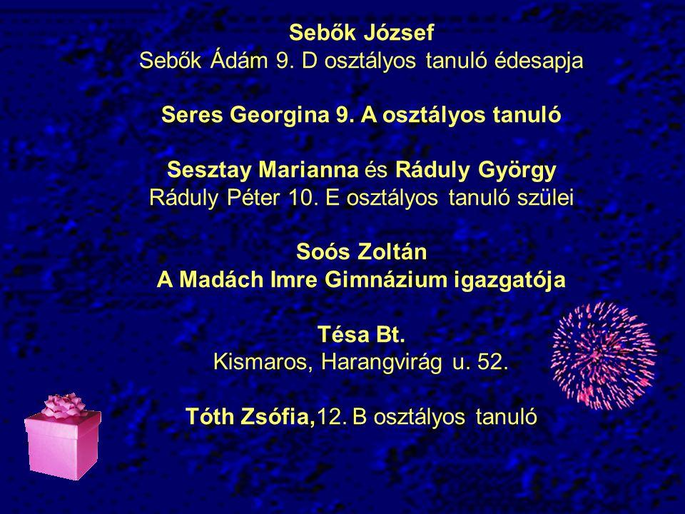 Sebők József Sebők Ádám 9.D osztályos tanuló édesapja Seres Georgina 9.