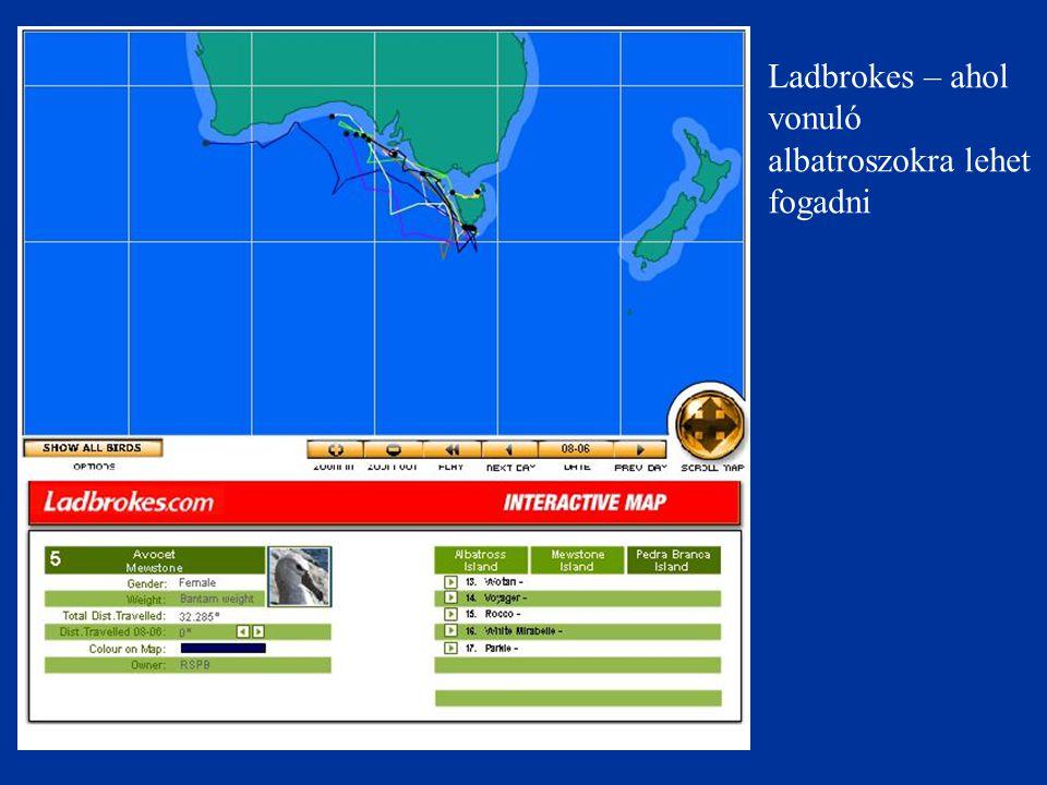 Ladbrokes – ahol vonuló albatroszokra lehet fogadni