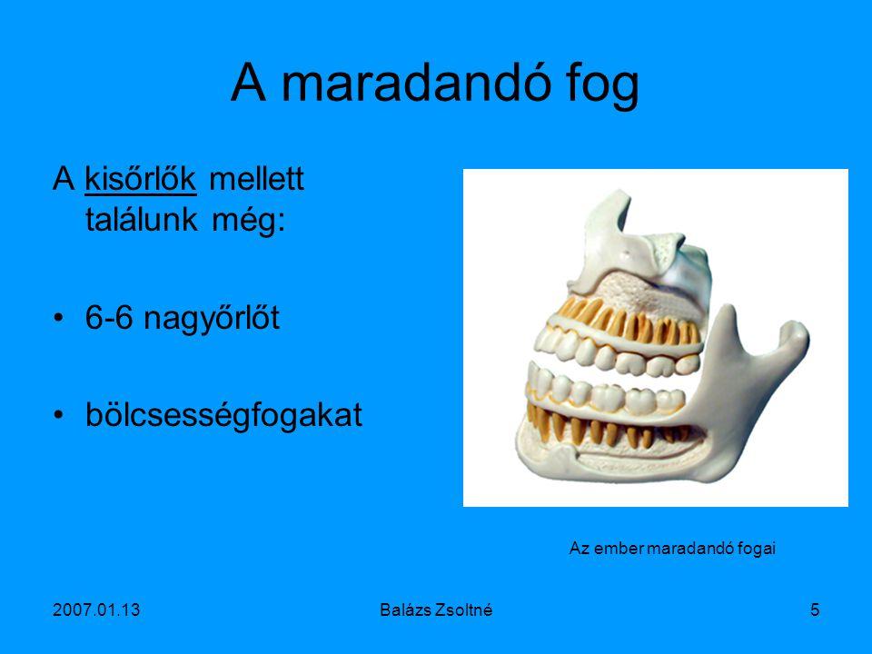 2007.01.13Balázs Zsoltné6 A fog betegségei Fogkő Fogbél-gyulladás Fogíny-gyulladás Fogszuvasodás Szuvas fog