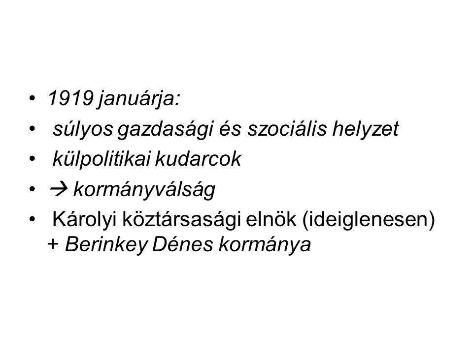 1919 januárja: súlyos gazdasági és szociális helyzet külpolitikai kudarcok  kormányválság Károlyi köztársasági elnök (ideiglenesen) + Berinkey Dénes