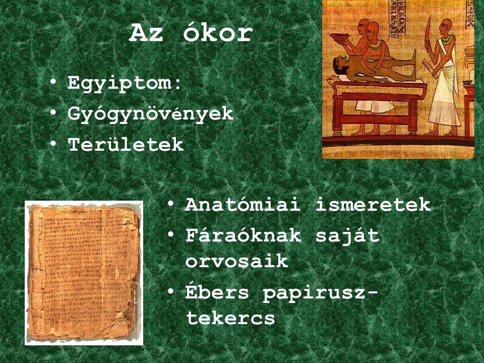Az ókor Egyiptom: Gyógynöv é nyek Területek Anatómiai ismeretek Fáraóknak saját orvosaik Ébers papirusz- tekercs