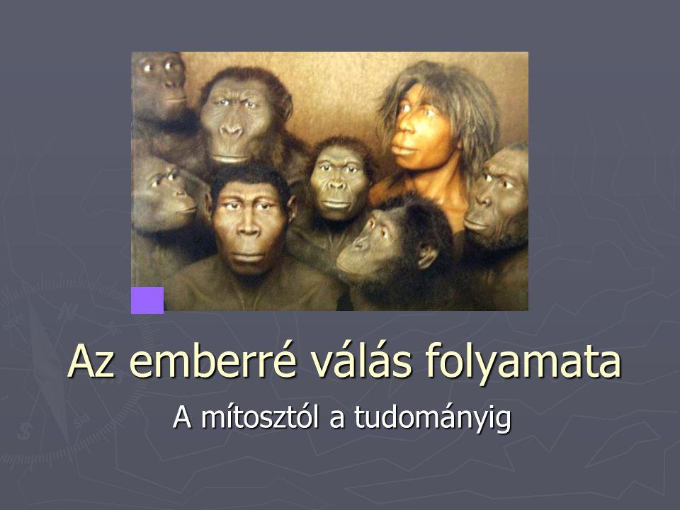 Ősember / Neander-völgyi ember  Homo sapiens specializált válfaja – zsákutca  [1856-ban fedezték fel leleteit]  100 [esetleg 400] ezer éve jelent meg.