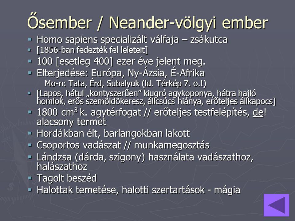 Ősember / Neander-völgyi ember  Homo sapiens specializált válfaja – zsákutca  [1856-ban fedezték fel leleteit]  100 [esetleg 400] ezer éve jelent m