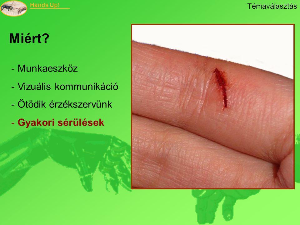 Hands Up! - Munkaeszköz - Vizuális kommunikáció - Ötödik érzékszervünk - Gyakori sérülések Miért? Témaválasztás