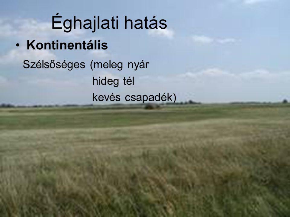 Éghajlati hatás Kontinentális Szélsőséges (meleg nyár hideg tél kevés csapadék)