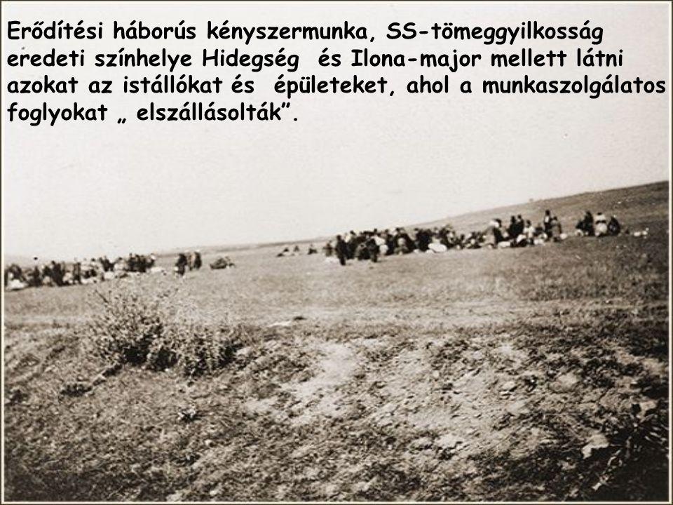 Erődítési háborús kényszermunka, SS-tömeggyilkosság eredeti színhelye Hidegség és Ilona-major mellett látni azokat az istállókat és épületeket, ahol a