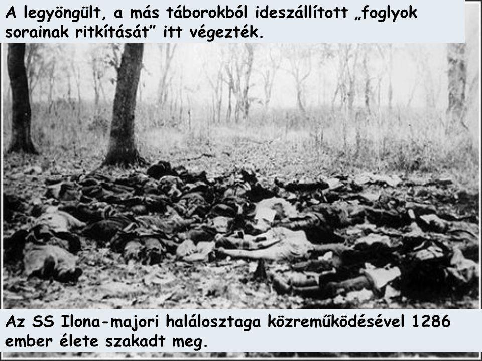 """A legyöngült, a más táborokból ideszállított """"foglyok sorainak ritkítását"""" itt végezték. Az SS Ilona-majori halálosztaga közreműködésével 1286 ember é"""