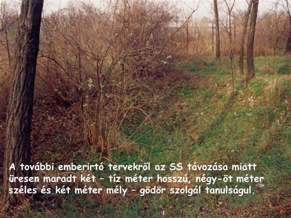 A további emberirtó tervekről az SS távozása miatt üresen maradt két – tíz méter hosszú, négy-öt méter széles és két méter mély – gödör szolgál tanuls