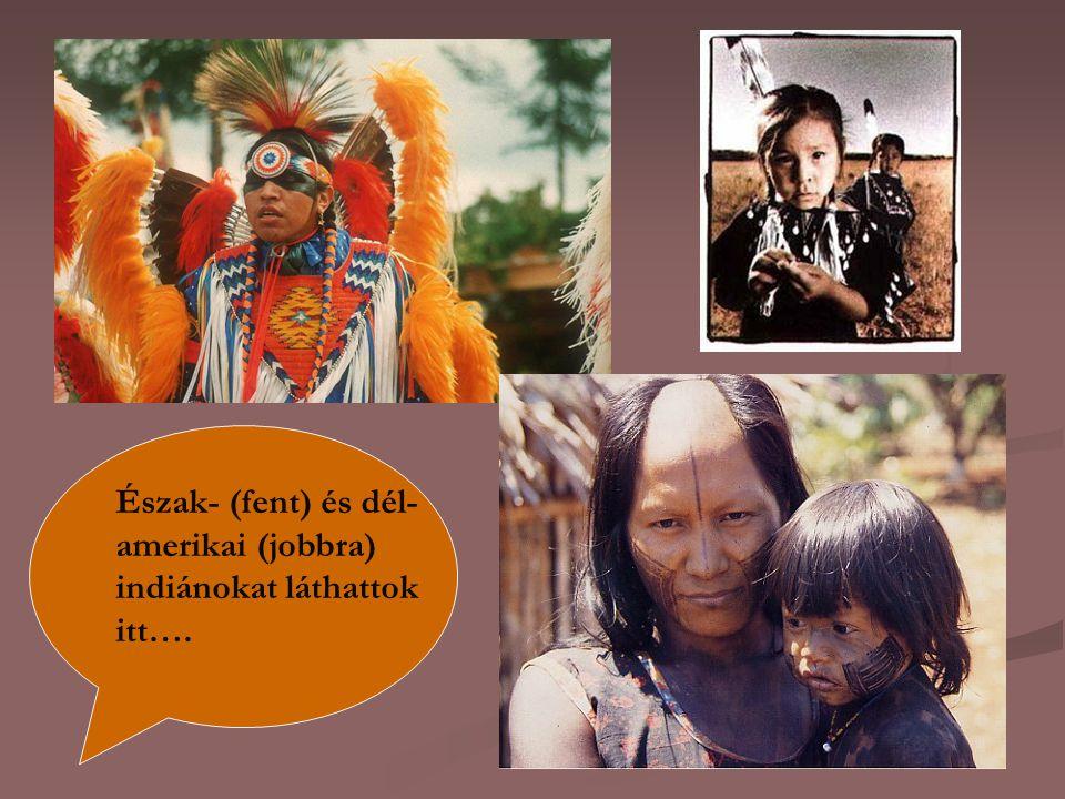 Észak- (fent) és dél- amerikai (jobbra) indiánokat láthattok itt….