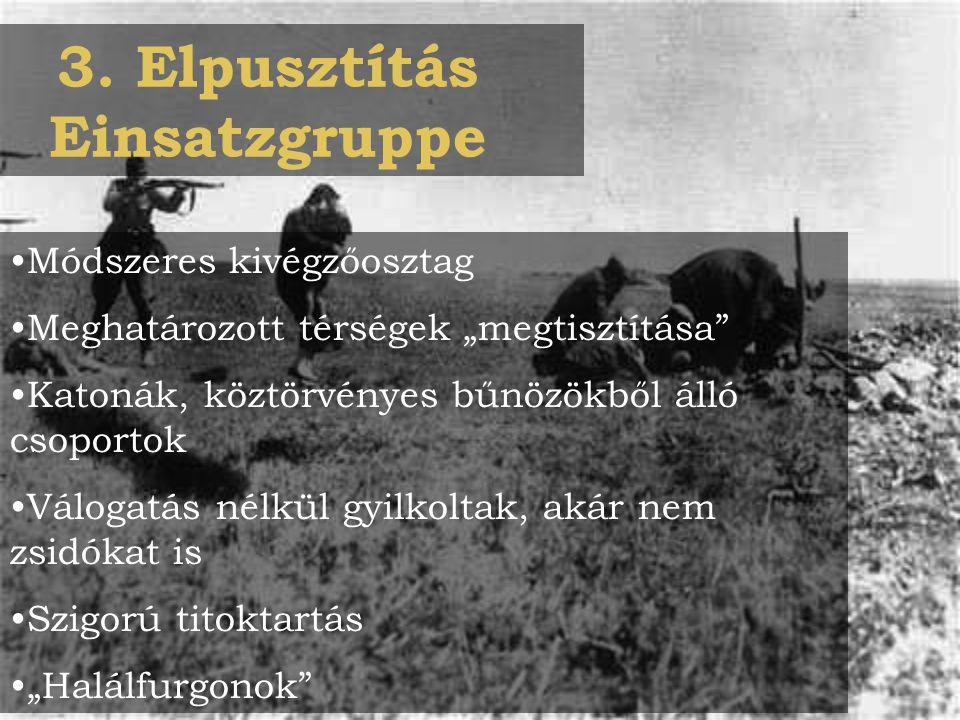 """3. Elpusztítás Einsatzgruppe Módszeres kivégzőosztag Meghatározott térségek """"megtisztítása"""" Katonák, köztörvényes bűnözökből álló csoportok Válogatás"""