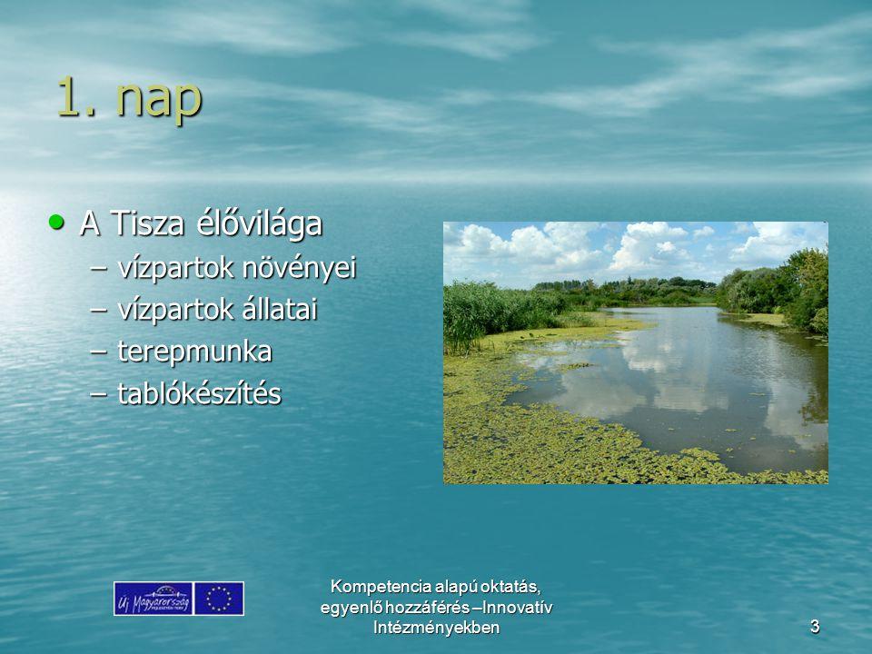 Kompetencia alapú oktatás, egyenlő hozzáférés –Innovatív Intézményekben3 1. nap A Tisza élővilága A Tisza élővilága –vízpartok növényei –vízpartok áll