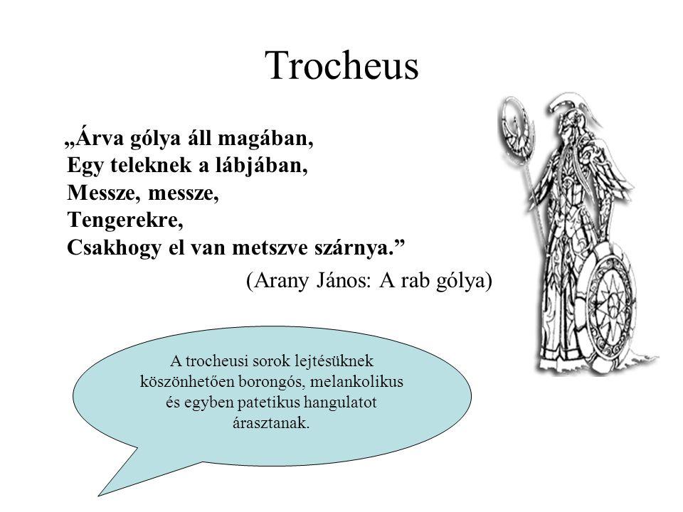 """Trocheus """"Árva gólya áll magában, Egy teleknek a lábjában, Messze, messze, Tengerekre, Csakhogy el van metszve szárnya."""" (Arany János: A rab gólya) A"""