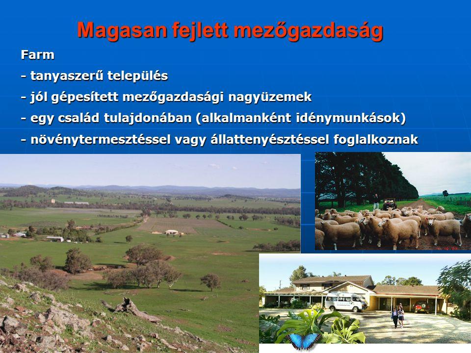 Magasan fejlett mezőgazdaság Farm - tanyaszerű település - jól gépesített mezőgazdasági nagyüzemek - egy család tulajdonában (alkalmanként idénymunkás