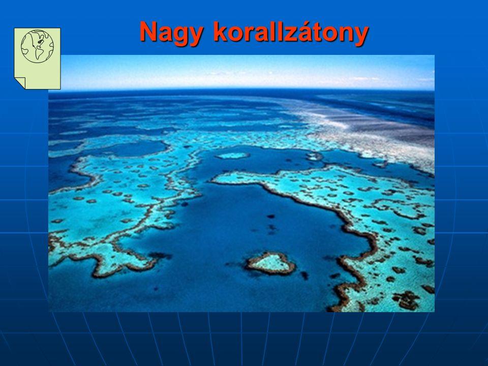 Nagy korallzátony