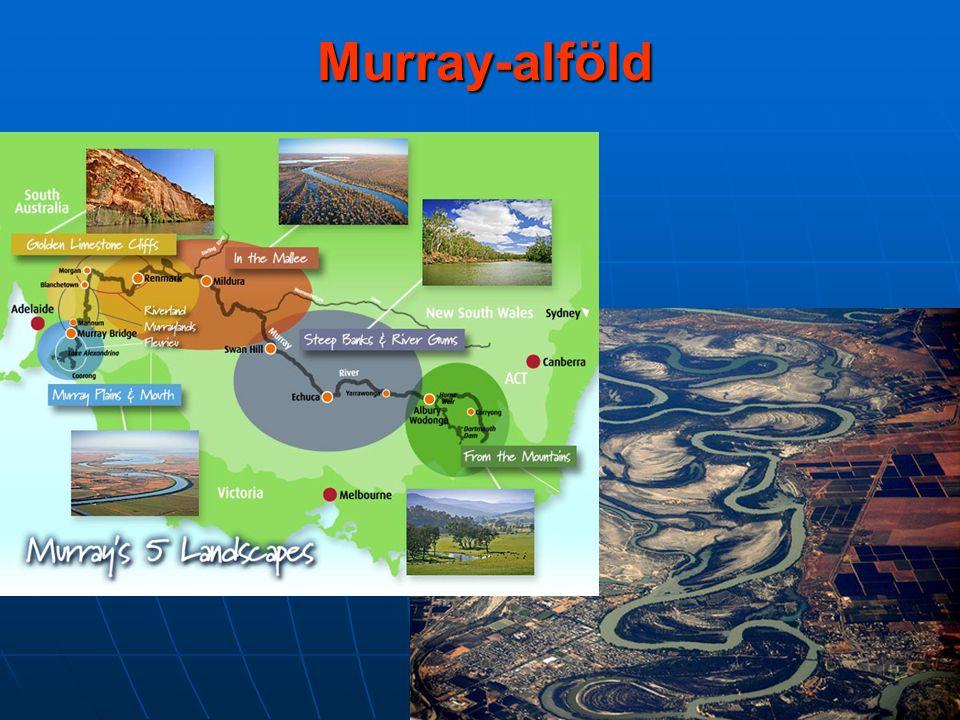 Murray-alföld