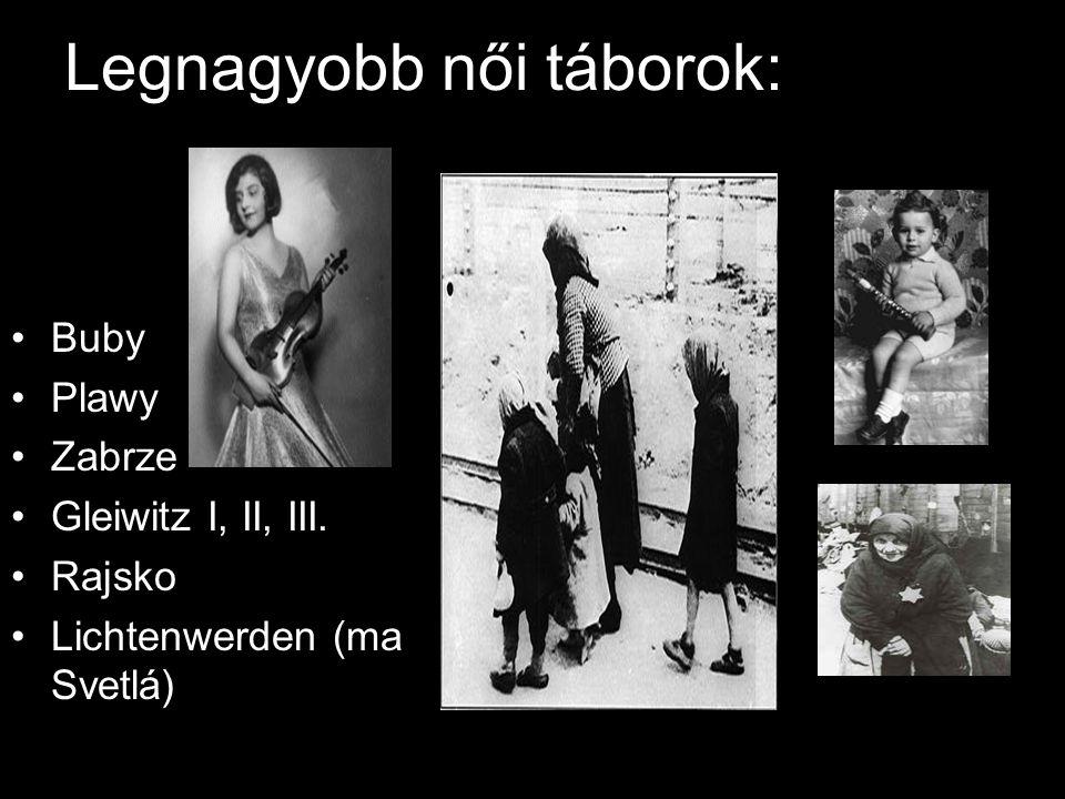 Legnagyobb női táborok: Buby Plawy Zabrze Gleiwitz I, II, III. Rajsko Lichtenwerden (ma Svetlá)