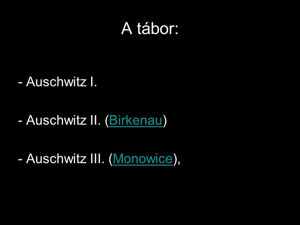 Auschwitz I. :