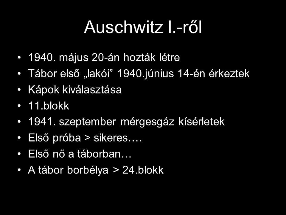 """Auschwitz I.-ről 1940. május 20-án hozták létre Tábor első """"lakói"""" 1940.június 14-én érkeztek Kápok kiválasztása 11.blokk 1941. szeptember mérgesgáz k"""