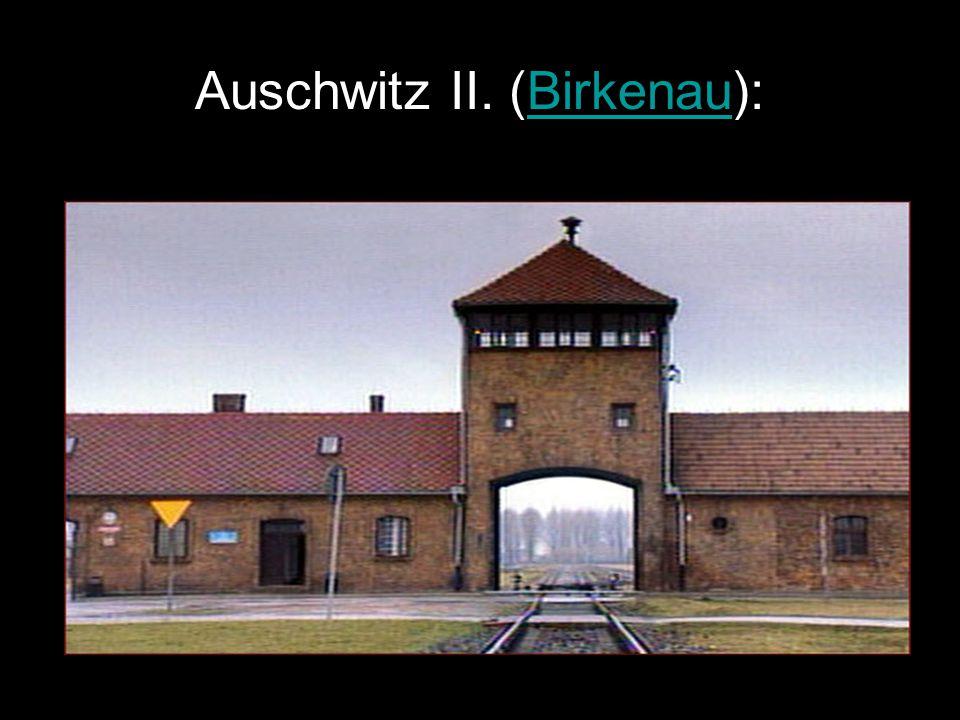 """Auschwitz II.-ről Egyszerűen """"Auschwitz … Csoportokra osztás: -gázkamrába -rabszolgamunkára -orvosi kísérletekre Ellenállási szervezetek Felszabadítás, túlélők Táborok személyzete Múzeumról.."""
