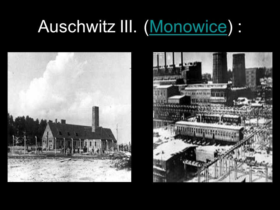 Auschwitz III. és a kisebb táborok Öntödék Fegyvergyárak Bányák Legnagyobb: Monowitz