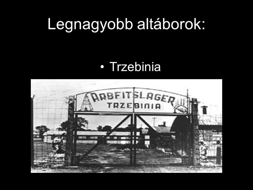 Legnagyobb altáborok: Blechhammer Althammer