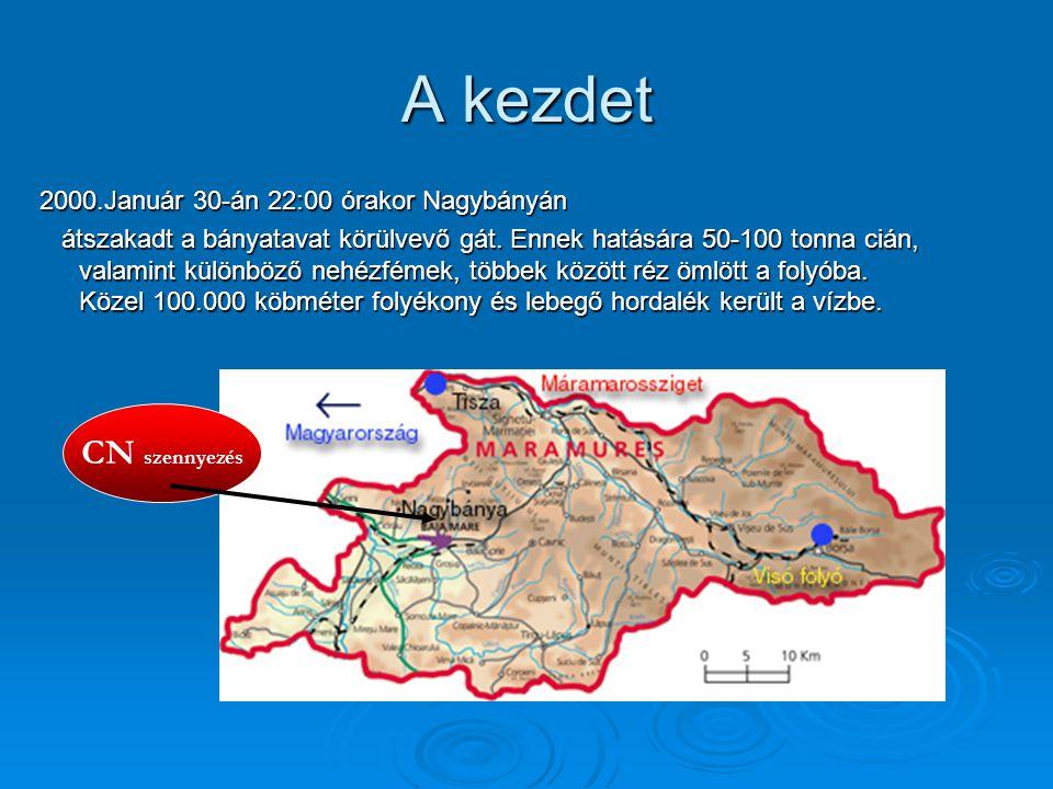 A kezdet 2000.Január 30-án 22:00 órakor Nagybányán átszakadt a bányatavat körülvevő gát. Ennek hatására 50-100 tonna cián, valamint különböző nehézfém