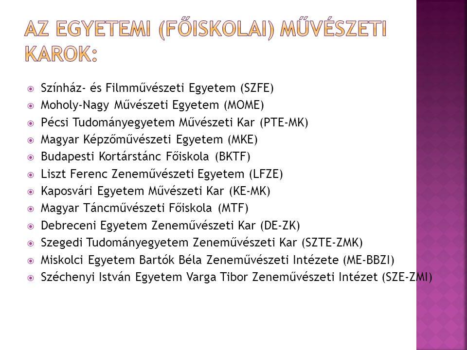  Színház- és Filmművészeti Egyetem (SZFE)  Moholy-Nagy Művészeti Egyetem (MOME)  Pécsi Tudományegyetem Művészeti Kar (PTE-MK)  Magyar Képzőművésze