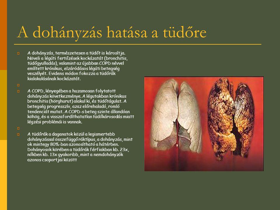 A dohányzás hatása a tüdőre  A dohányzás, természetesen a tüdőt is károsítja. Növeli a légúti fertőzések kockázatát (bronchitis, tüdőgyulladás), vala