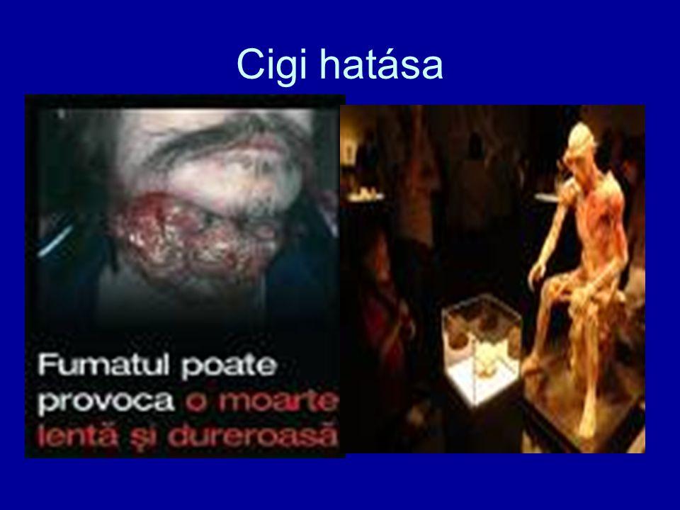 Cigi hatása