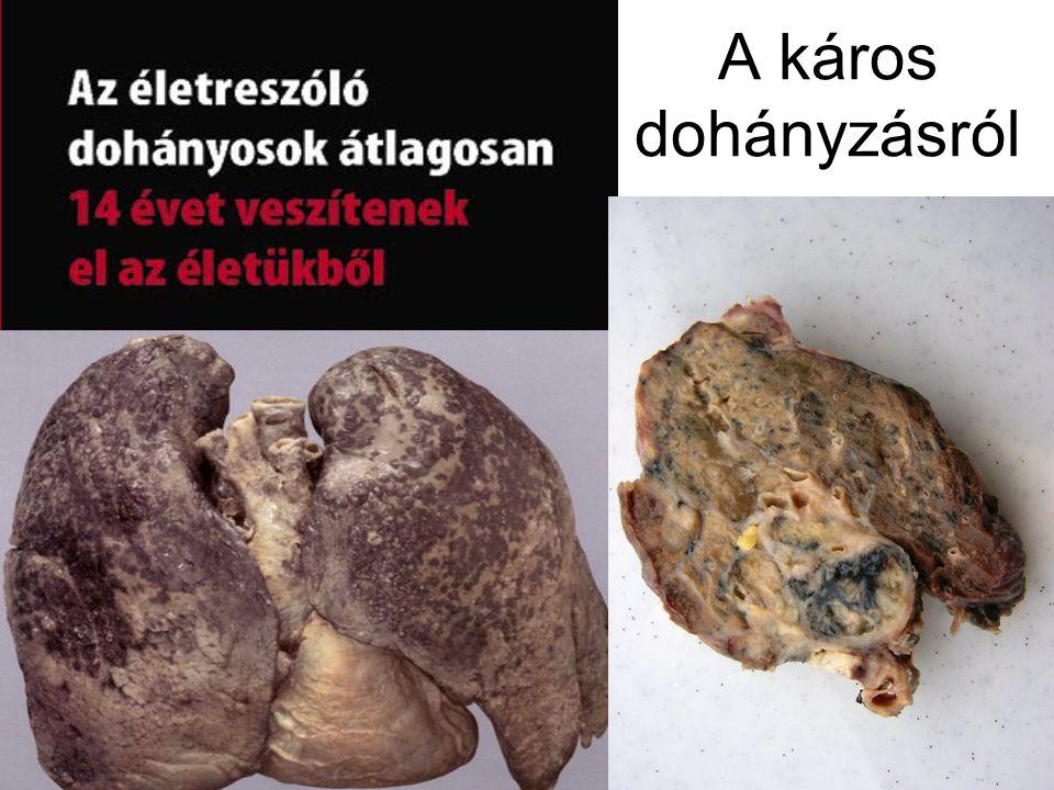 A káros dohányzásról