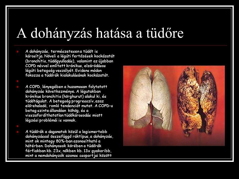 A dohányzás hatása a tüdőre A dohányzás, természetesen a tüdőt is károsítja. Növeli a légúti fertőzések kockázatát (bronchitis, tüdőgyulladás), valami