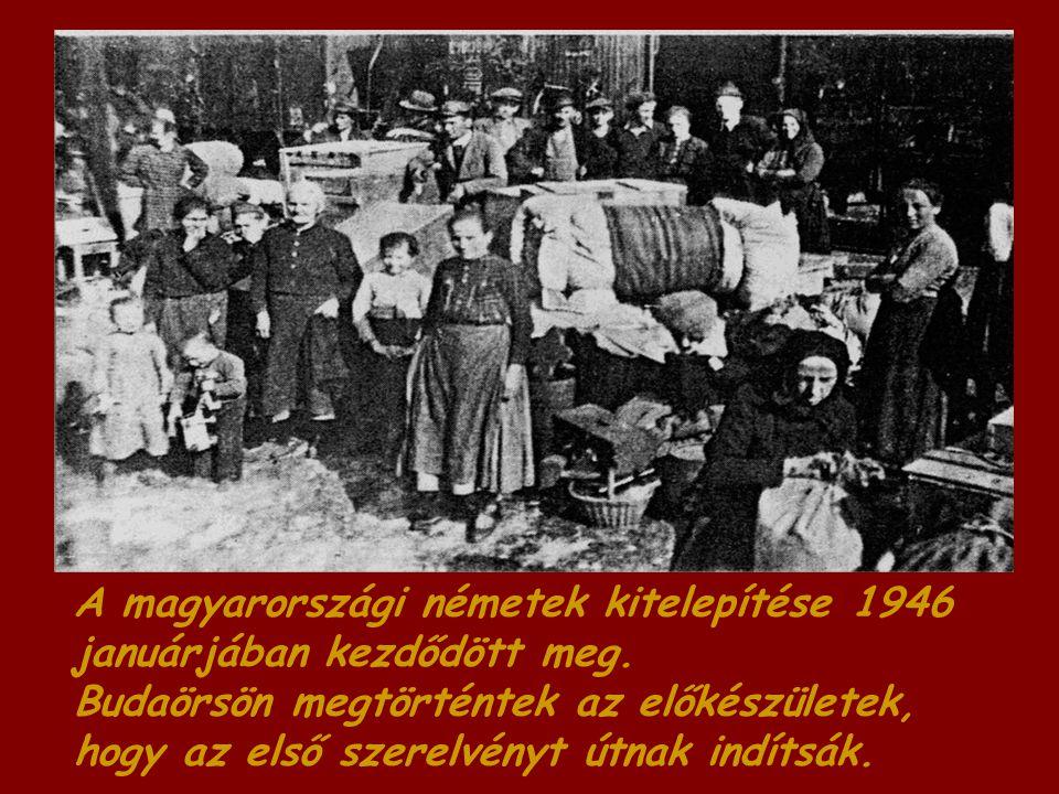 A magyarországi németek kitelepítése 1946 januárjában kezdődött meg.