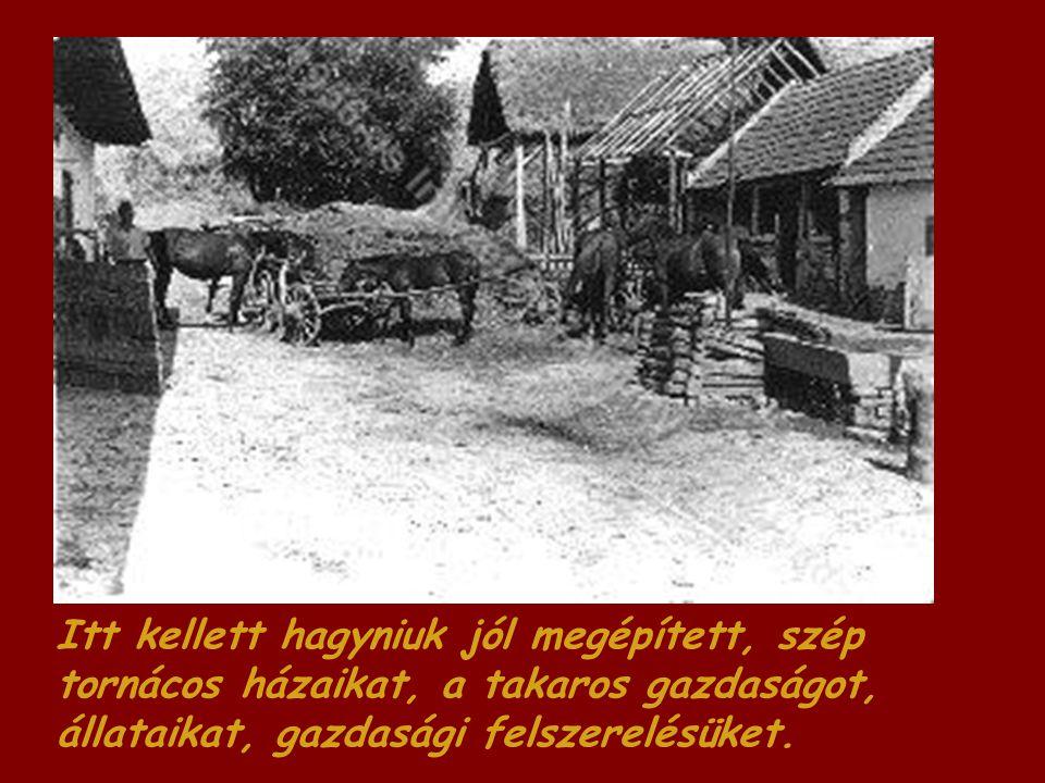 Itt kellett hagyniuk jól megépített, szép tornácos házaikat, a takaros gazdaságot, állataikat, gazdasági felszerelésüket.