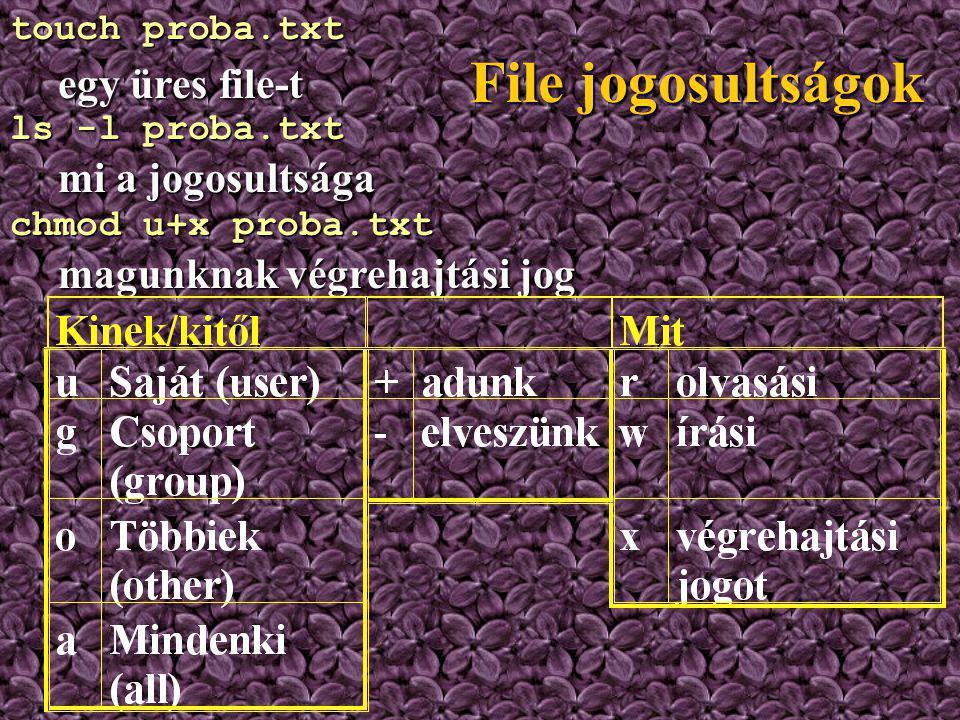 File jogosultságok A többfelhasználós operációs rendszerekben szabályozni kell, kinek milyen joga van egy egy file használatához!A többfelhasználós op