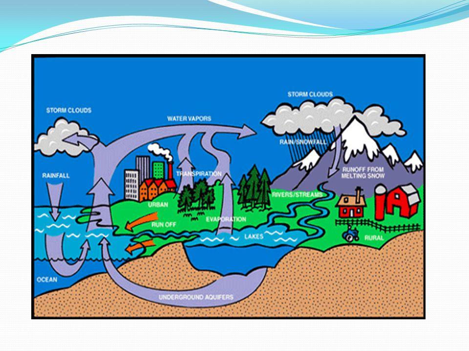 Olajszennyezés Egy liter olaj 1 millió liter tiszta vizet képes fogyasztásra alkalmatlanná tenni.