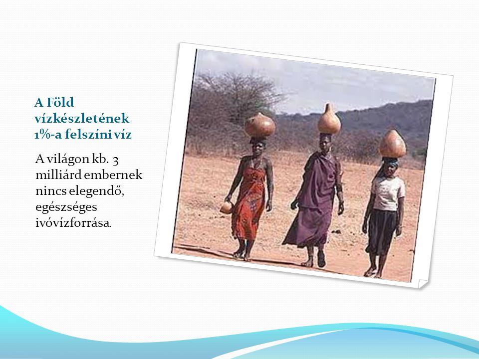 A Föld vízkészletének 1%-a felszíni víz A világon kb. 3 milliárd embernek nincs elegendő, egészséges ivóvízforrása.