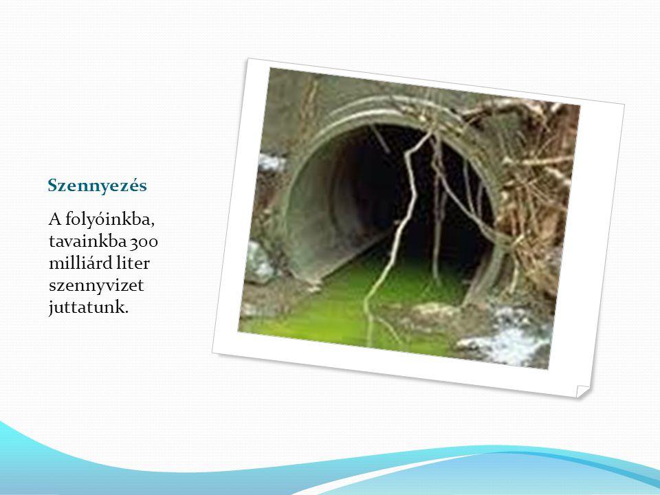 A víz szennyezői A mezőgazdaság 80 millió tonna műtrágyát használ fel.