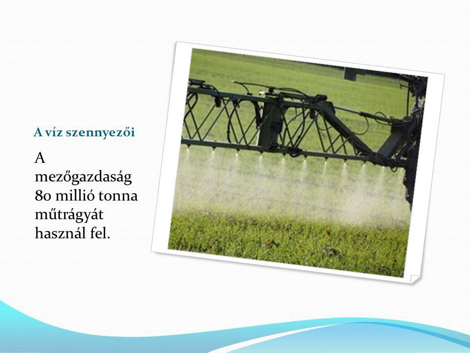 A víz szennyezői A lakosság és az ipar több mint 120 millió tonna mosószert, kozmetikumot használ fel.